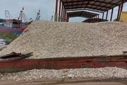 """Kinh hoàng rác thải """"bủa vây"""" cảng cá Lạch Vạn (Nghệ An)"""