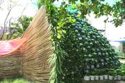 Choáng: Bó hoa cẩm tú cầu khổng lồ cao gần 5 mét được kết từ 1.000 chậu hoa ở Sa Đéc