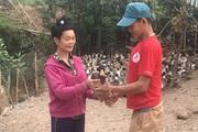 Sơn La: Nuôi thứ vịt đặc sản, một nông dân đút túi cả trăm triệu đồng