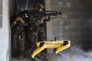 Quân đội Pháp đang thử nghiệm chó Robot trong chiến đấu