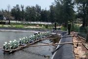 Quảng Trị: Nhà chức trách đang điều tra vụ 1 triệu con tôm nghi bị đầu độc bằng thuốc trừ sâu