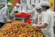 Giữa đại dịch Covid-19, xuất khẩu nông sản của Việt Nam vẫn tăng 18%