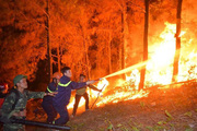 Vừa vào đợt nắng nóng đầu tiên của năm 2021, nguy cơ cháy rừng cao, Tổng cục Lâm nghiệp đề nghị làm ngay việc này