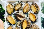 Thứ hải sản cao cấp quý như vàng bỗng được bán giá rẻ như rau ngoài chợ và sự thật bất ngờ