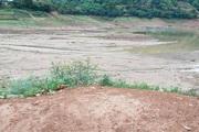 Sơn La: Nước sông Đà đột ngột rút nhanh, nông dân nuôi cá lồng ăn không ngon, ngủ không yên
