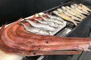 Siêu thị cá sạch – sự chọn lựa hoàn hảo về hải sản
