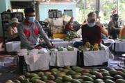 Sơn La: Nhiều giải pháp hỗ trợ sản phẩm nông sản vươn ra thị trường trong nước và quốc tế
