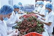 Xuất khẩu nông, lâm, thủy sản Việt Nam tăng 30,3% trong 5 tháng đầu năm 2021