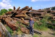"""Bình Phước: Dự án """"bảo vệ rừng"""" để… mất rừng, một số tổ chức bị kiểm điểm"""