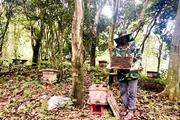 Hà Giang: Ở nơi địa đầu Tổ quốc có những cựu binh thu nhập hàng trăm triệu đồng