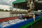 Lần đầu tiên xuất khẩu phân bón đạt khối lượng, kim ngạch cao nhất