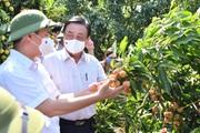 Bộ trưởng Lê Minh Hoan: Không dừng lại ở việc bán được bao nhiêu nông sản mà hình thành nền nông nghiệp minh bạch