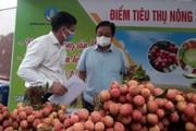Bộ NNPTNT và 3 đoàn thể đồng loạt mở 5 điểm tiêu thụ nông sản, quyết nói không với giải cứu