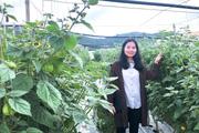 """Lâm Đồng: Xôn xao """"sơn nữ"""" cất bằng kỹ sư về quê trồng những cây tầm bóp khổng lồ mà thu hàng tỷ đồng"""