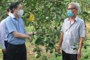 13 năm thực hiện Nghị quyết 26 ở tỉnh Tuyên Quang: Nông dân càng thêm tin tưởng vào khát vọng đổi mới