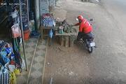 CLIP: Ngán ngẩm thanh niên khỏe mạnh đi trộm sầu riêng và xe đạp trẻ em