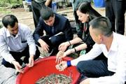 CEO Tập đoàn Thủy sản Bồ Đề Nguyễn Thị Hằng và 'sứ mệnh' hình thành cộng đồng sản xuất đầy trách nhiệm
