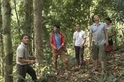 Lai Châu: Nậm Chà chú trọng công tác quản lý, bảo vệ và phát triển rừng