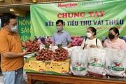 Hội Nông dân tỉnh Bắc Giang cảm ơn Báo NTNN/Điện tử Dân Việt hỗ trợ, kết nối tiêu thụ vải thiều Lục Ngạn