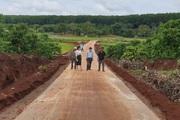 Gia Lai: Nhiều hộ đặc biệt khó khăn chặt điều, cà phê hiến đất làm đường giao thông