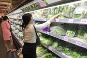 Cả trăm nghìn combo nông sản toàn rau, củ ngon sẵn sàng cung ứng cho TP.HCM
