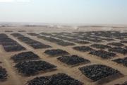 """Kuwait biến """"nghĩa địa lốp xe"""" thành một thành phố thông minh mới"""