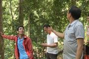 Nậm Nhùn nâng cao tỷ lệ độ che phủ rừng