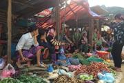 Nông thôn Tây Bắc: Phụ nữ Phìn Hồ giảm nghèo bền vững