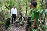 Cà Mau: 41.000ha rừng tràm có nguy cơ cháy cao