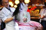 Bên trong chợ cá tươi ngon nhất thế giới, bán lên tới triệu USD/con