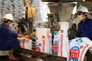 Lâm Thao xuất khẩu hơn 29.000 tấn phân bón sang Nhật, Hàn Quốc
