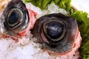 Khóc thét đặc sản mắt cá ngừ đại dương: Không can đảm đố dám ăn