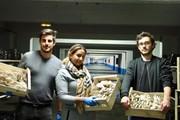Kì diệu nông trại trồng nấm và rau sạch dưới lòng đất thủ đô Paris