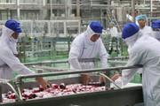 Lavifood sẽ ký hợp đồng bao tiêu nông sản cho nhiều nông dân, HTX