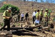 """Bộ trưởng Bộ NN&PTNT yêu cầu xóa bỏ các """"điểm nóng"""" phá rừng"""