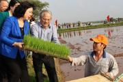 Phú Xuyên khởi sắc đầu năm mới: Phấn đấu về đích vào cuối năm nay