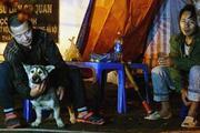 ẢNH-CLIP: Người trông đào thả chó, thức trắng đêm chống trộm