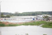 Dân Đồng Tháp Mười xé rào nuôi tôm trên đất lúa, khó xử lý