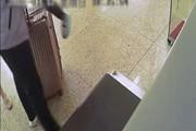 TQ: Ra ga tàu về quê ăn Tết, bố lơ đễnh quăng con vào máy quét hành lý
