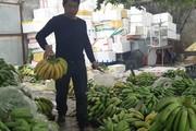 Tấp nập chợ chuối Trung Châu-nơi buôn bán chuối lớn nhất Thủ đô