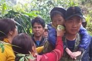 Giải cứu hai bé trai lạc trong rừng