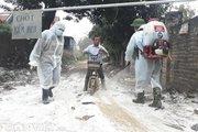 Lãnh đạo Cục Thú y nói gì về sự nguy hiểm của cúm gia cầm H5N6?