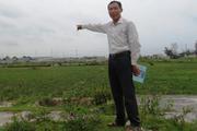 Thanh Hóa: Xót xa gần 100ha đất làm muối bị bỏ hoang vì ô nhiễm