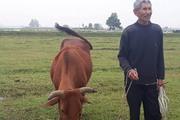 Nguyên Bộ trưởng NNPTNT Lê Huy Ngọ lên tiếng vụ chăn thả trâu bò phải đóng phí