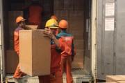 2 tấn lá Khát cực độc nhập lậu vào Việt Nam qua cảng Hải Phòng