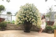 """Sửng sốt với bình hoa loa kèn 1000 bông """"mười phân vẹn mười"""" của bà mẹ Hà Thành"""