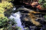 Dân khốn khổ vì kênh ô nhiễm bốc mùi hôi thối nên đổ đất chặn