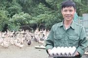 Giám đốc nuôi vịt, bỏ lại cuộc đời hơn 20 năm nghiện ma túy