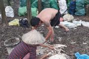 """Thái Nguyên: """"Núi"""" xương động vật bốc mùi nồng nặc giữa khu dân cư"""