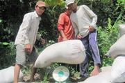 Xuất khẩu gạo sang Trung Quốc, 2 thị trường lớn giảm 1,1 triệu tấn